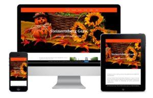 Webdesign für steinertsberg-gera.de